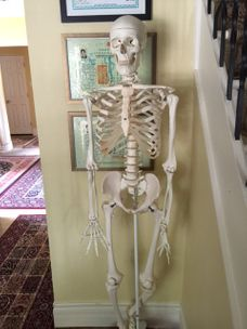 inside office, mr bones